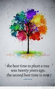 plant tree quotes