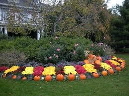 Fall Vegetable Garden Ideas by Fall Gardening Ideas