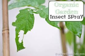 organic garden insect spray a few shortcuts