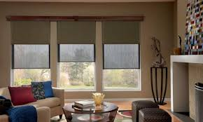 Blinds For Living Room Living Room With Modern Furniture And Solar Blinds Using Solar