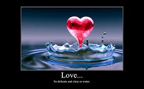 Love Is Unconditional Quote by Quotes About Love Unconditional Love Quotes