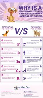 How to Successfully Start a Pet Sitting & Dog Walking Business
