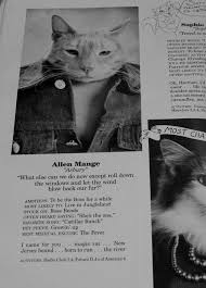 cat high yearbook uncategorized archives page 2 of 162 give up