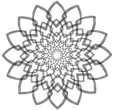 line drawing of flowers clipart 60