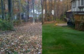 Fall Cleanup Landscaping by Fall Clean Up Livonia Mi Blue Valley Lawn Maintenance