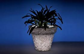 Glow In The Dark Planters by Luminous Led Pots Will Make You See Planters In A New Light Led