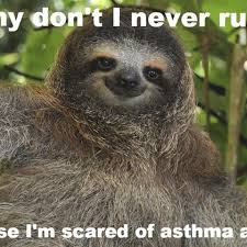 Asthma Sloth Meme - sloth asthma meme 100 images yes yes you can have my soul