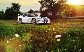 Dodge Viper Colors - dodge viper white color wide