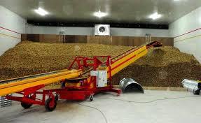 consommation chambre froide pomme de terre les producteurs se plaignent de l onilev