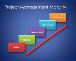 free sqert project management model template for operational