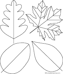 template for leaf simple leaf template the sweetgum template used