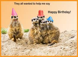 happy birthday cards with animals birthday party ideas for kids