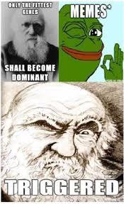 Survival Memes - memetics in art history survival of the dankest