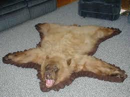 Taxidermy Bear Rug Polar Bear Skin Rug For Sale Roselawnlutheran