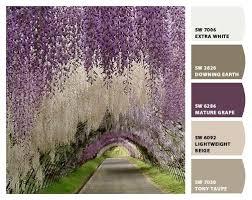331 best palettes of color vivid images on pinterest colors