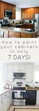 how to paint cabinets fast how to paint your cabinets in 7 days kitchen cabinet