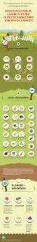 23 Diagrams That Make Gardening by 23 Diagrams That Make Gardening So Much Easier Raising Building