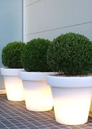 eye am planter contemporary planters planters and indoor outdoor