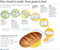 s aration cuisine s our how bread is made from grain to loaf entrees food and rolls