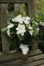 best 25 gardenia bouquet ideas on pinterest gardenia bridesmaid