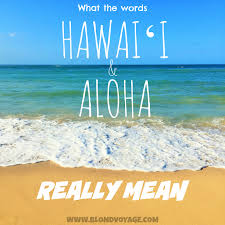 Hawaii travel phrases images What does da kine mean 10 hawaiian pidgin words to know blondvoyage jpg