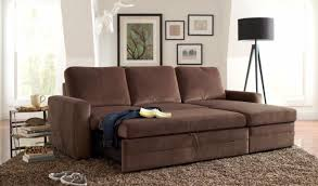 Brown Sleeper Sofa Sofa Amazing Furniture Maximizing Small Living Room Spaces Brown