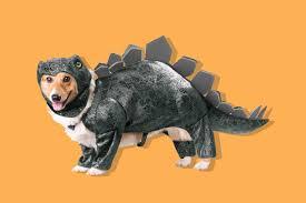 Dog Halloween Costumes 13 Dog Halloween Costumes 2017 Minute Cheap