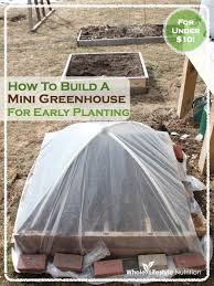 How To Build A Tent How To Build A Mini Greenhouse For Early Planting In 5 Easy Steps