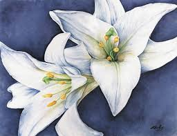 white lillies white lilies between brush strokes