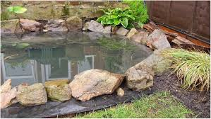 backyards appealing diy backyard ponds diy outdoor fish ponds