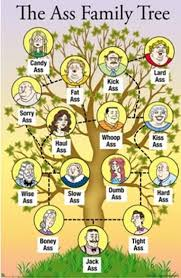 the family tree poster at com