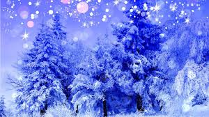 winter snow view paradise colorful way colors beautiful trees road