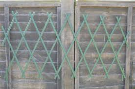 expanding trellis trellises mince his words