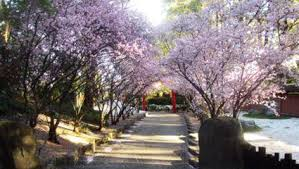 Auburn Botanical Garden Auburn Botanic Gardens For And Families Ellaslist