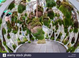 hanging plants adorn the times square electronic garden in new