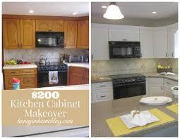 Modernizing Oak Kitchen Cabinets How To Update Oak Kitchen Cabinets Without Painting Monsterlune