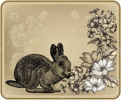 vintage rabbit vintage frame with rabbit blooming roses and phloxes vector il