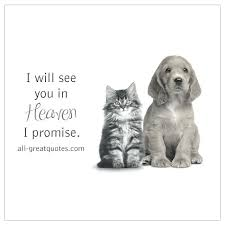 loss of pet loss of pet quotes also a dog wags his with his heart