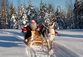 christmas reindeer photo santa and reindeer in lapland photo christmas
