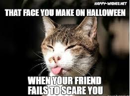 Cat Internet Meme - funny halloween cat memes happy wishes