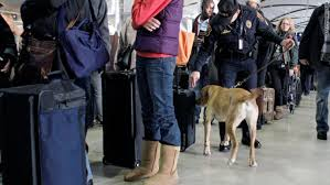 major change coming to the security lines at dia cbs denver