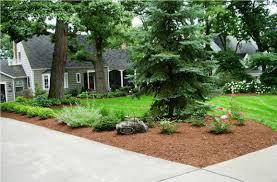 florida landscaping ideas for front yard u2014 biblio homes unique