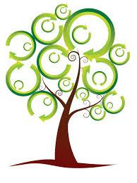 oak tree outline clipart cliparthut free clipart