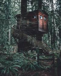 Treehouse Point Wa - exploration adventure wanderlust
