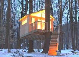 tree house plans you can live in tree house plans and designs free
