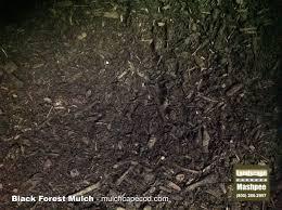 bark mulch delivery landscape express cape cod