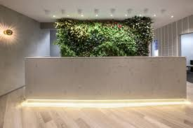 Reception Desks Sydney Park Clinic By Morris Selvatico Interior Design Sydney