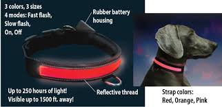 Light Up Dog Collar Light Up Led Dog Collar Light City Metro Country Street Walking Safety
