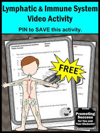 this free printable lymphatic and immune systems worksheet and