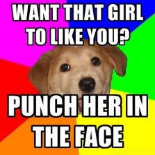 advice dog meme 28 images bad advice cat memes image 10818
